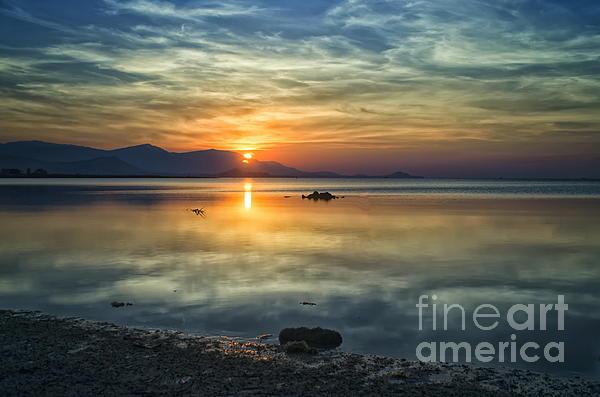 Michelle Meenawong - Sun Reflection