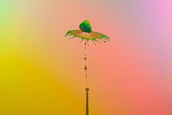 Christophe Hamman - Sun umbrella