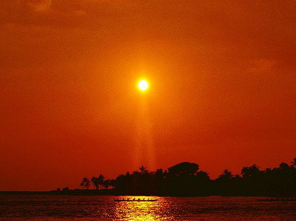 Athala Carole Bruckner - Sunset Ride