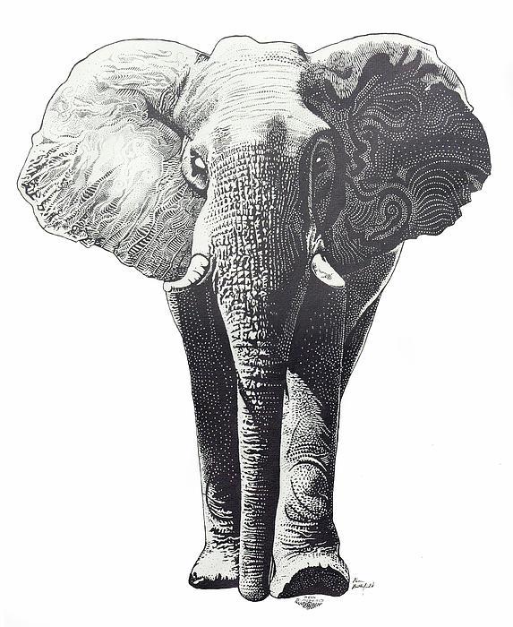 Kean Butterfield - The Elephant