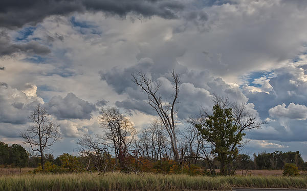 John M Bailey - The Flatlands of the Indiana Dunes