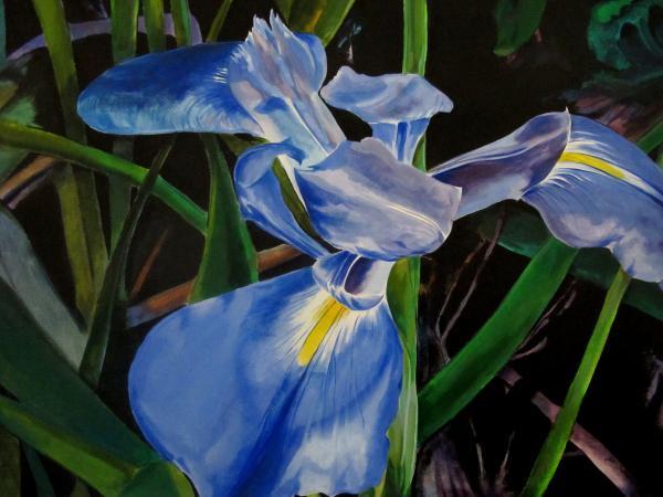John  Duplantis - The Iris