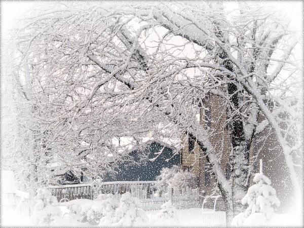 Kay Novy - The Last Snow Storm