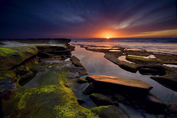 Peter Tellone - Tidepool Sunsets