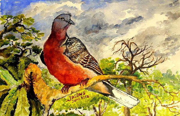 Jason Sentuf - Turtle - Dove