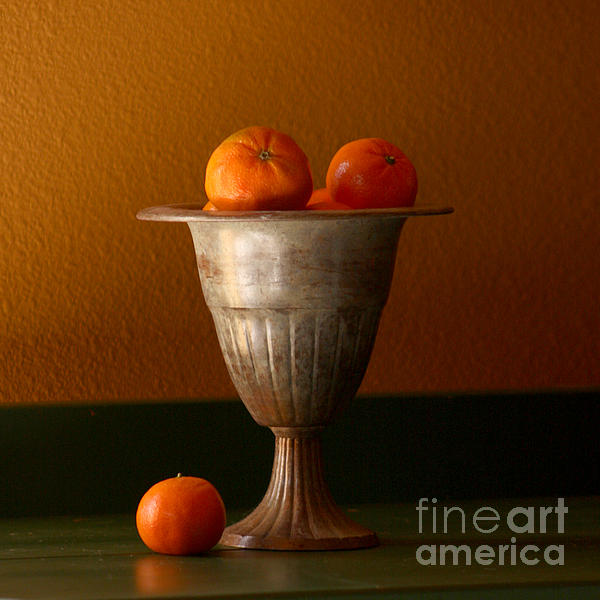 Art Block Collections - Tuscany Tangerines