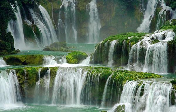 Charline Xia - Waterfall in Green