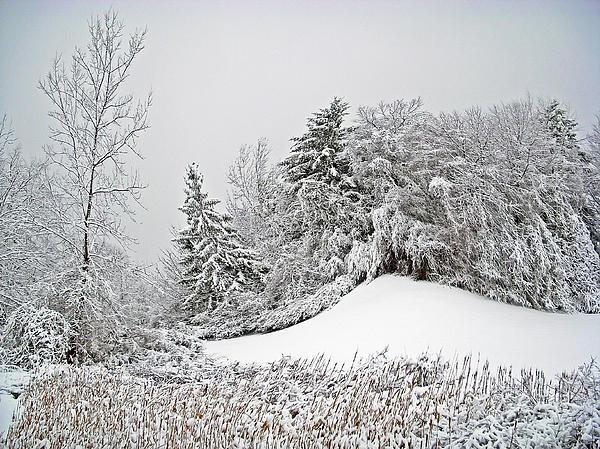 Aimee L Maher Photography and Art Visit ALMGallerydotcom - Wintery Fun