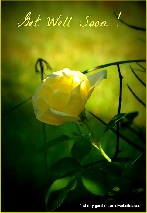 Sherry Gombert - Yellow Rose Get Well