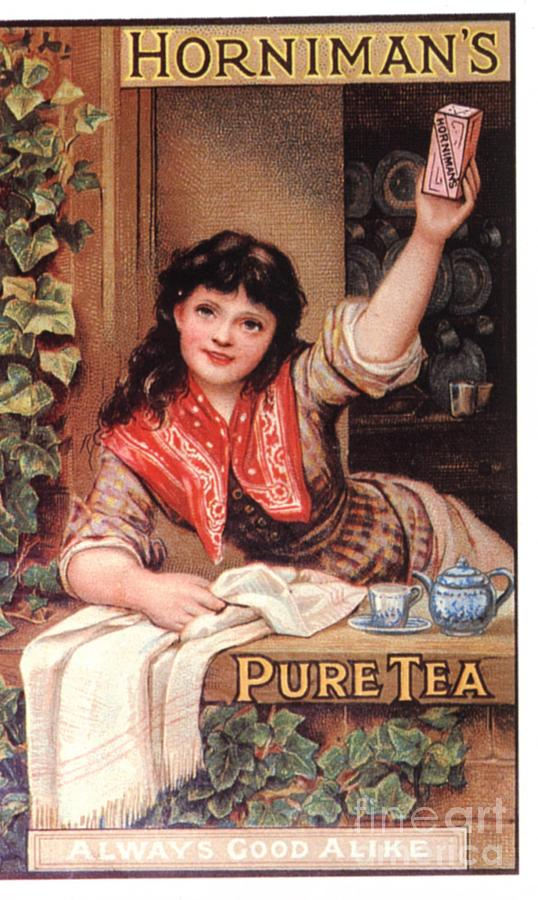 Nineteenth Century Drawing -  1890s Uk Tea Horniman�s by The Advertising Archives