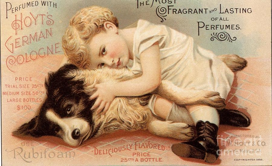 1890s Drawing -  1890s Usa Babies Hoytes Cologne Dogs by The Advertising Archives