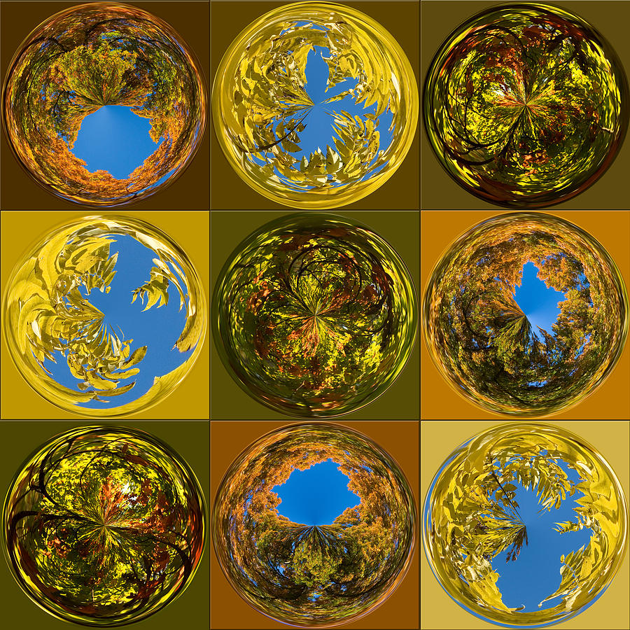 Fall Photograph -  Autumn  Spheres by Denise Beverly