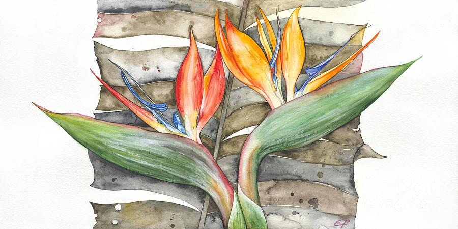 Strelitzia Painting -  Bird Of Paradise 04 Elena Yakubovich by Elena Yakubovich