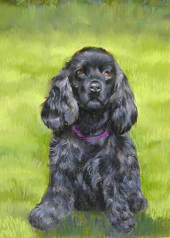 Black Cocker Spaniel Pastel -  Budwood The Black Cocker Spaniel by Lenore Gaudet