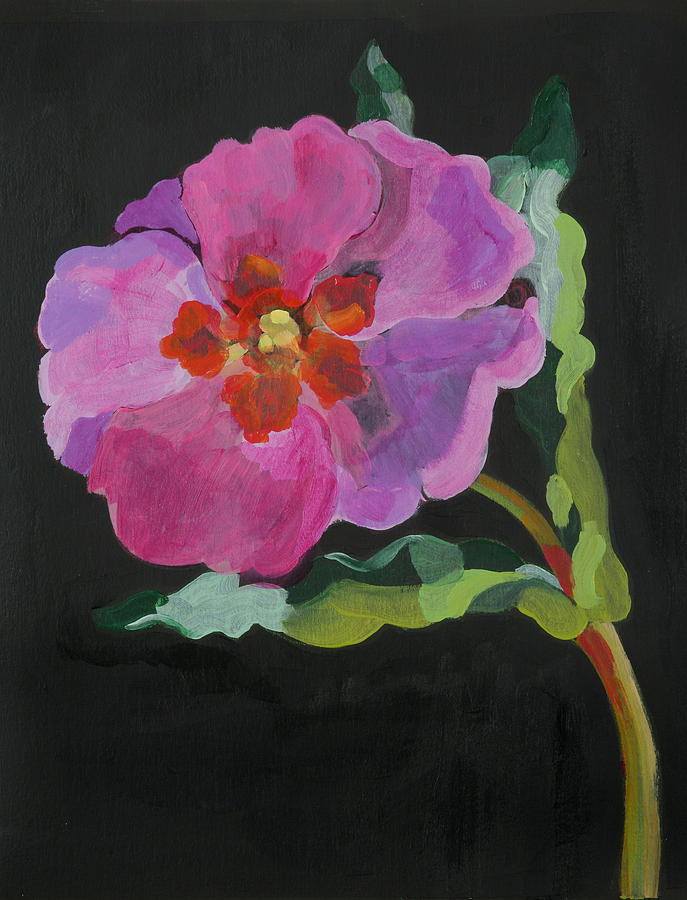 Floral Painting -  Cistus New Zealand by Deborah Barton