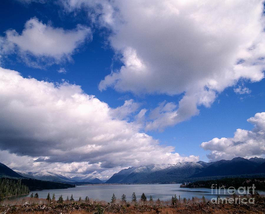 Clouds Photograph -  Clouds Over Lake Quinault by Tracy Knauer