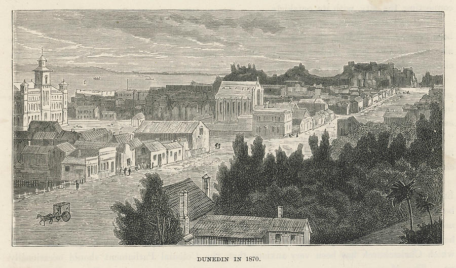 New Drawing -  Dunedin  General View        Date 1870 by Mary Evans Picture Library