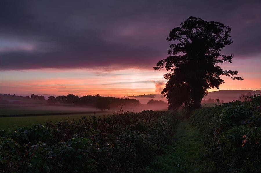 Exeter Photograph -  Hele Payne Farm At Dawn by Pete Hemington
