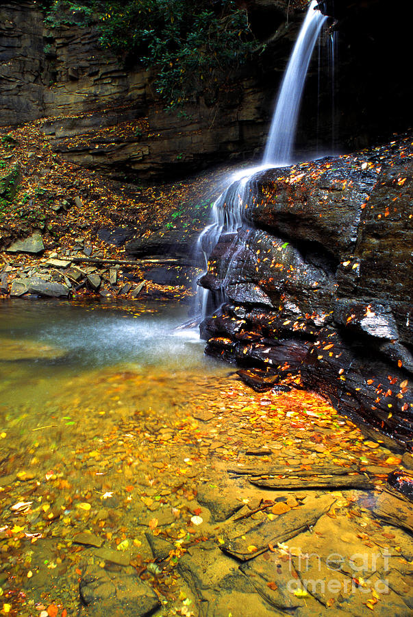 West Virginia Photograph -  Holly River State Park Upper Falls by Thomas R Fletcher