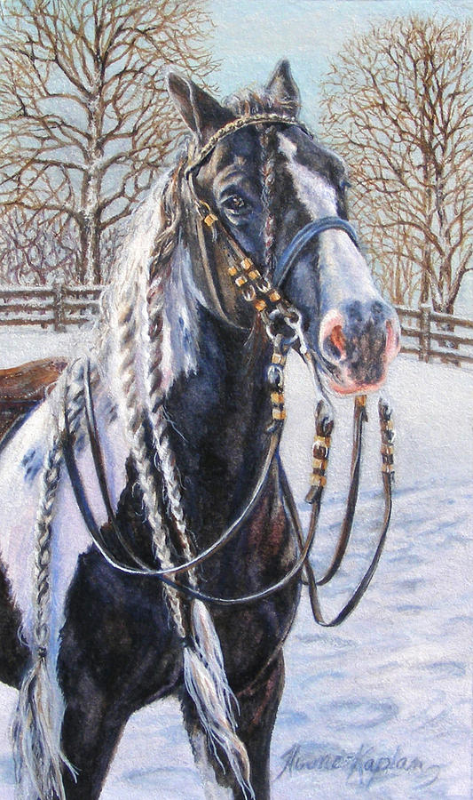 I'm Ready For The Ribbons Gypsy Vanner Horse by Denise Horne-Kaplan