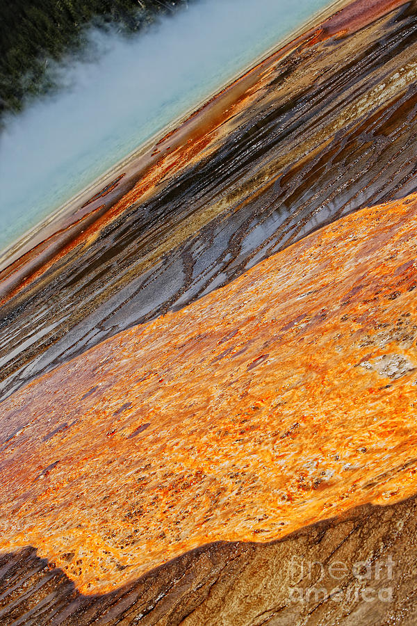 Geyser Photograph -  Midway Geyser Basin Beauty by Lincoln Rogers