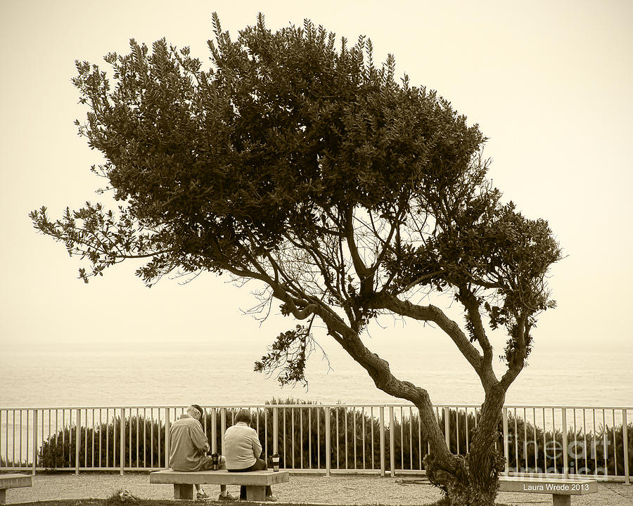 Beach Art Photograph -  Morning Coffee Together by Artist and Photographer Laura Wrede