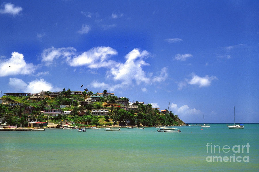 Puerto Rico Photograph -  Naguabo Shoreline by Thomas R Fletcher