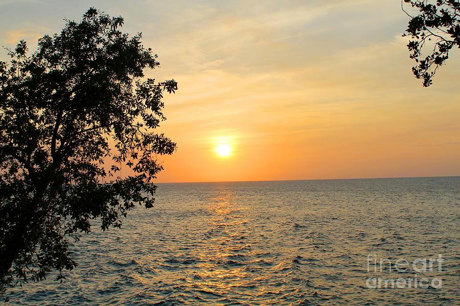 Negril Golden Sunset by Debbie Levene