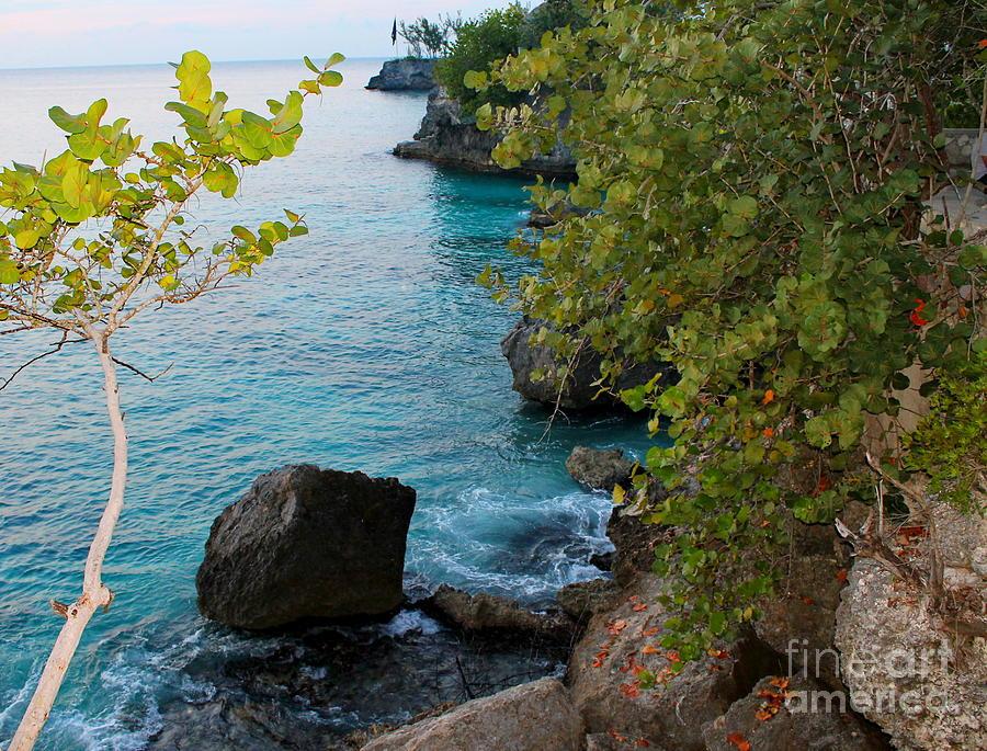 Negril West End Jamaica by Debbie Levene