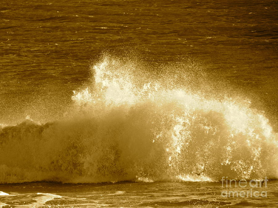 Water Photograph -  Ocean Life Remembers  by Qs House of Art ArtandFinePhotography