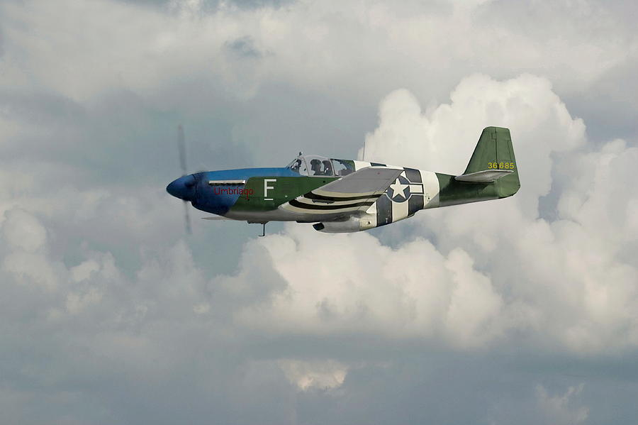Aircraft Photograph -  P51 Mustang Gallery - No1 by Pat Speirs