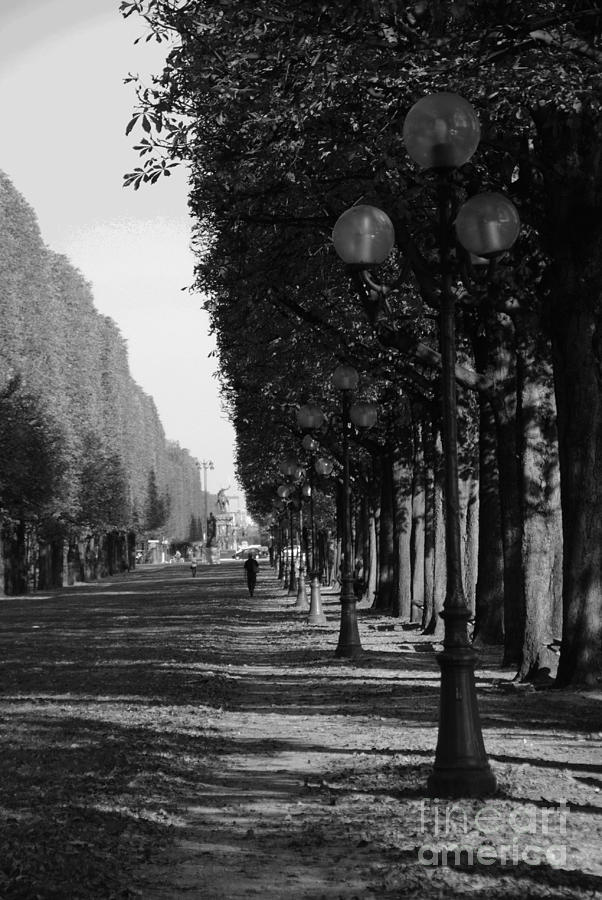Paris Photograph -  Paris - Peaceful Afternoon Bw by Jacqueline M Lewis