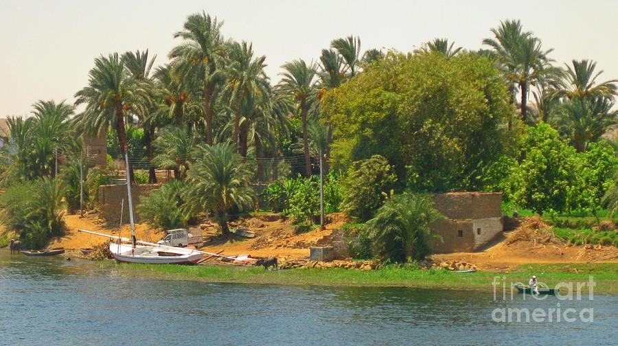 Scenery Along The River Nile Photograph