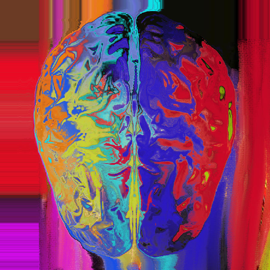 Brain Digital Art -  Shiny Brain by Soumya Bouchachi