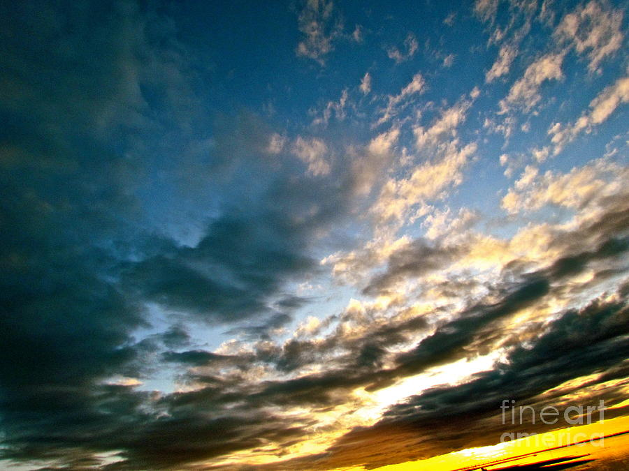 Nature Photograph -  Sky Sings by Qs House of Art ArtandFinePhotography