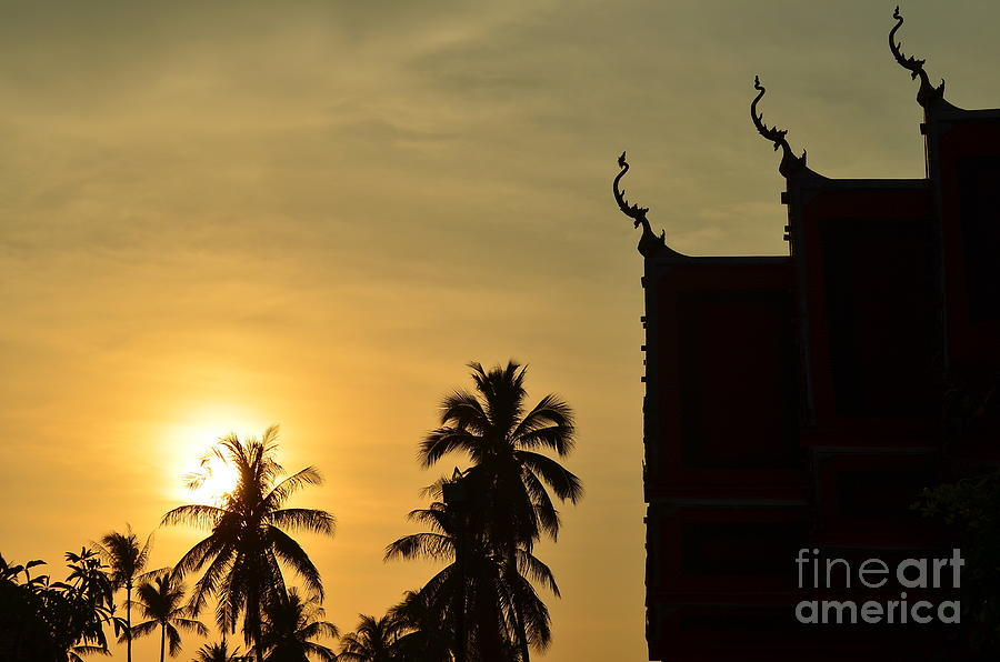 Nature Photograph -  Sunset In The Tempel by Michelle Meenawong