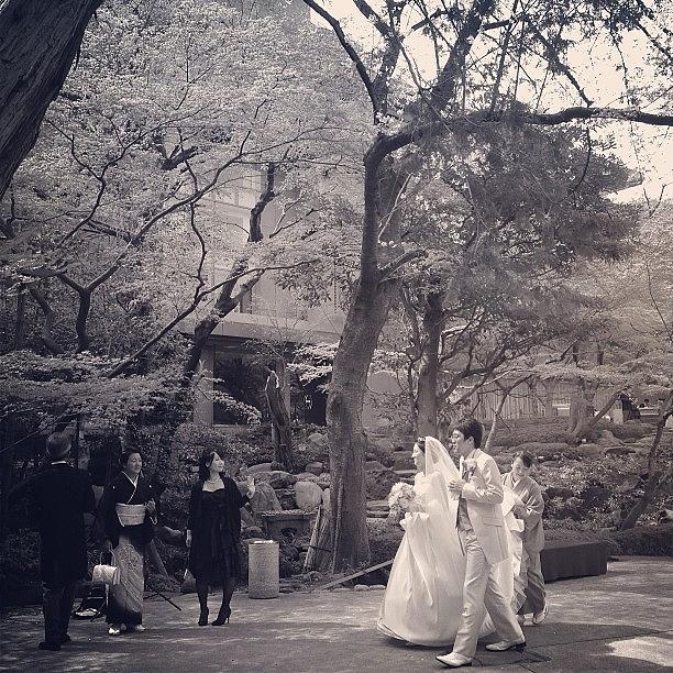 Wedding Photograph - 晴れの日 #tokyo #wedding by Tokyo Sanpopo