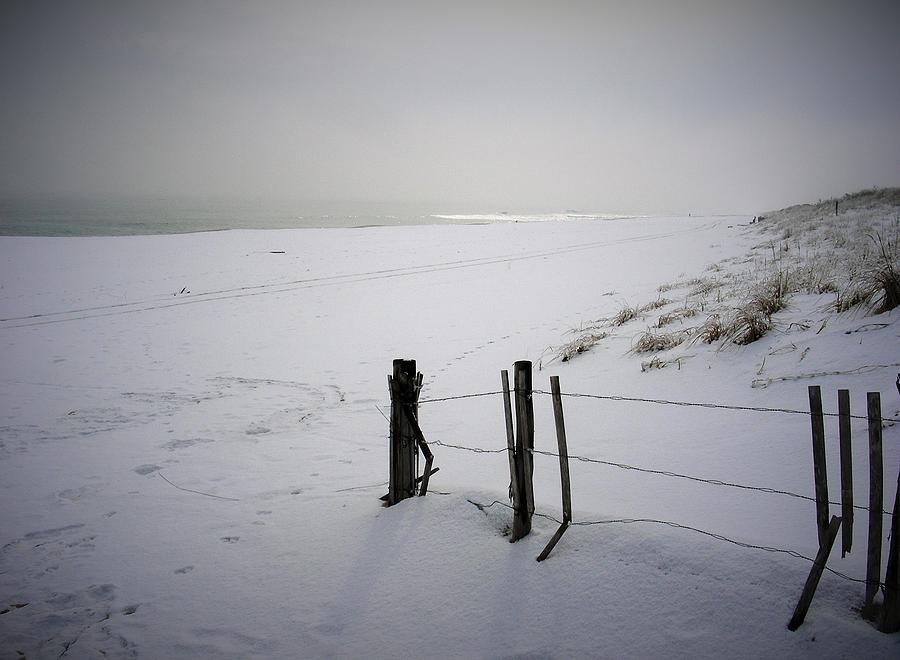 Island Beach State Park Photograph -  Winters Snow At Island Beach State Park by Vincent DeLucia