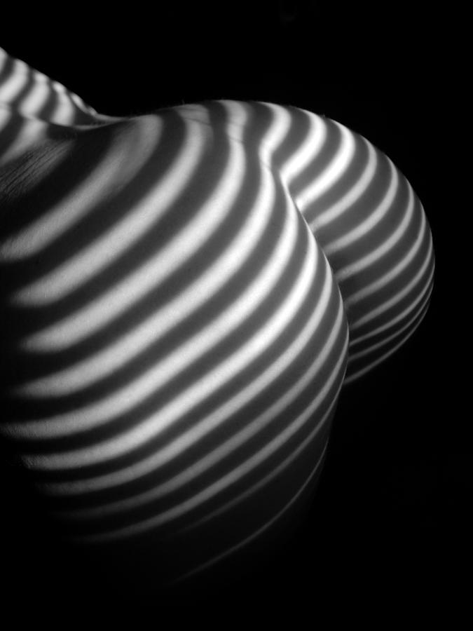 0028 Black And White Striped Nude Abstraction Photograph By Chris Maher-2640
