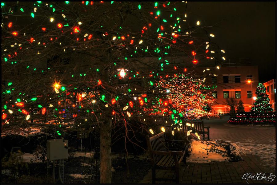 007 Christmas Light Show At Roswell Series Photograph by Michael ...