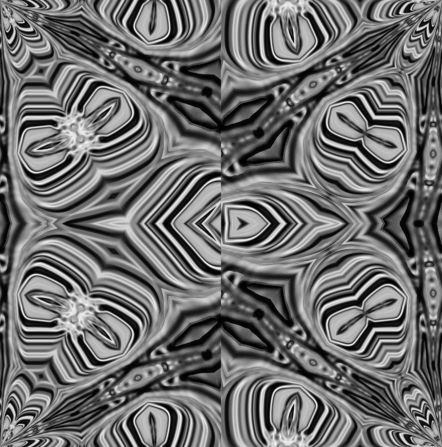 Monochrome Digital Art - 01-02-2014 by John Holfinger