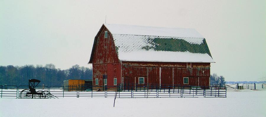 Winter Photograph - 012909-3 by Mike Davis