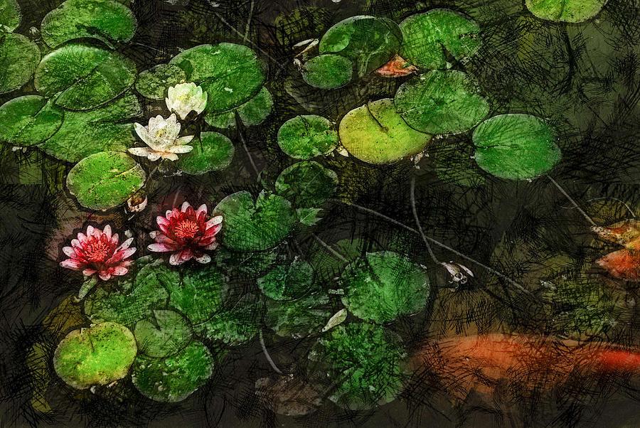Asia Digital Art - 0148-lily -   Lux Sl by David Lange