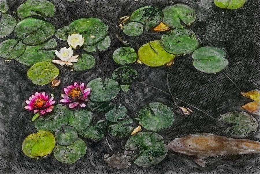 Asia Digital Art - 0148-lily -  Synchro Sl by David Lange