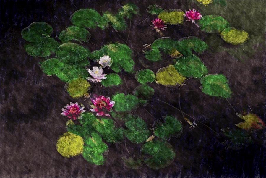 Asia Digital Art - 0151-lily -  Watercolor 2 Sl by David Lange