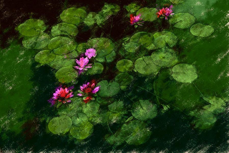 Asia Digital Art - 0151-lily - Chalk 1 Sl by David Lange