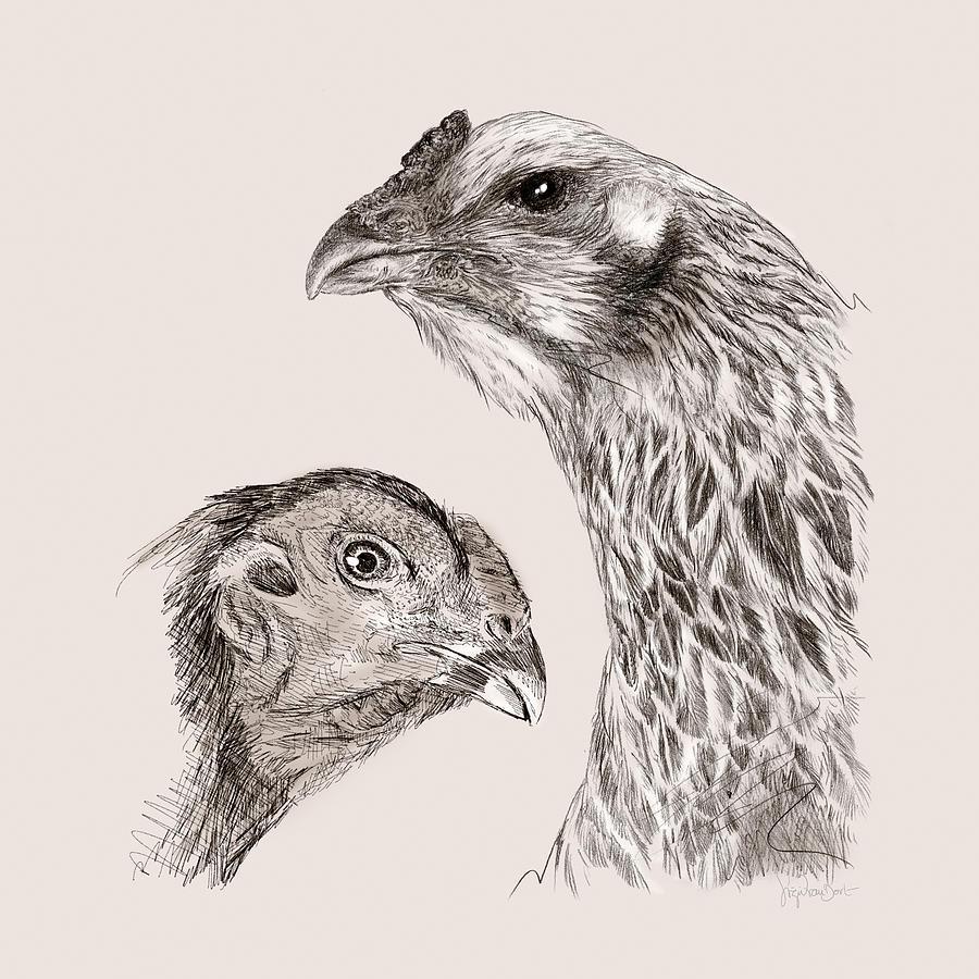 Chicken Digital Art - 51. Game Hens by Sigrid Van Dort