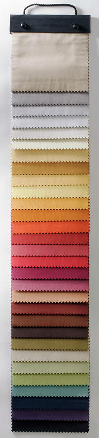 A Fabric Swatch Photograph by Larry Washburn