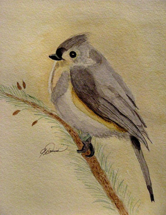 Tufted Titmouse Painting - A Tufted Titmouse by Angela Davies