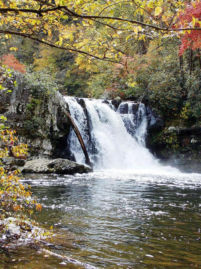 Abram Falls Photograph by Regina McLeroy